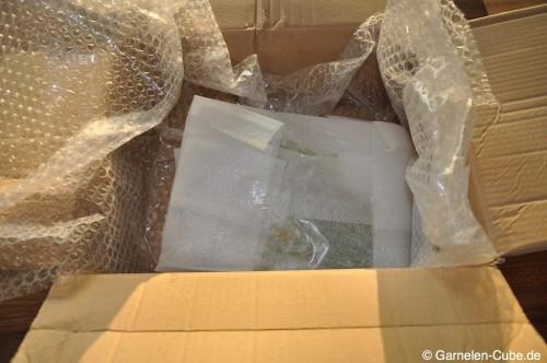 Aquariumpflanzen sicher verpacktAquariumpflanzen sicher verpackt
